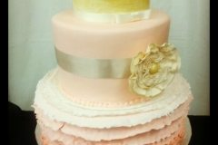 engagment cake Saskatoon