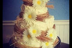rustic wedding cakes Saskatoon